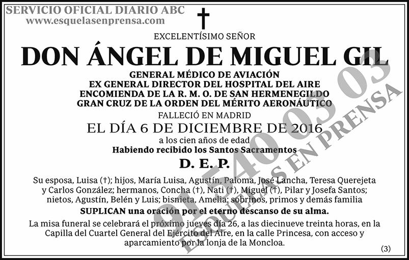 Ángel de Miguel Gil